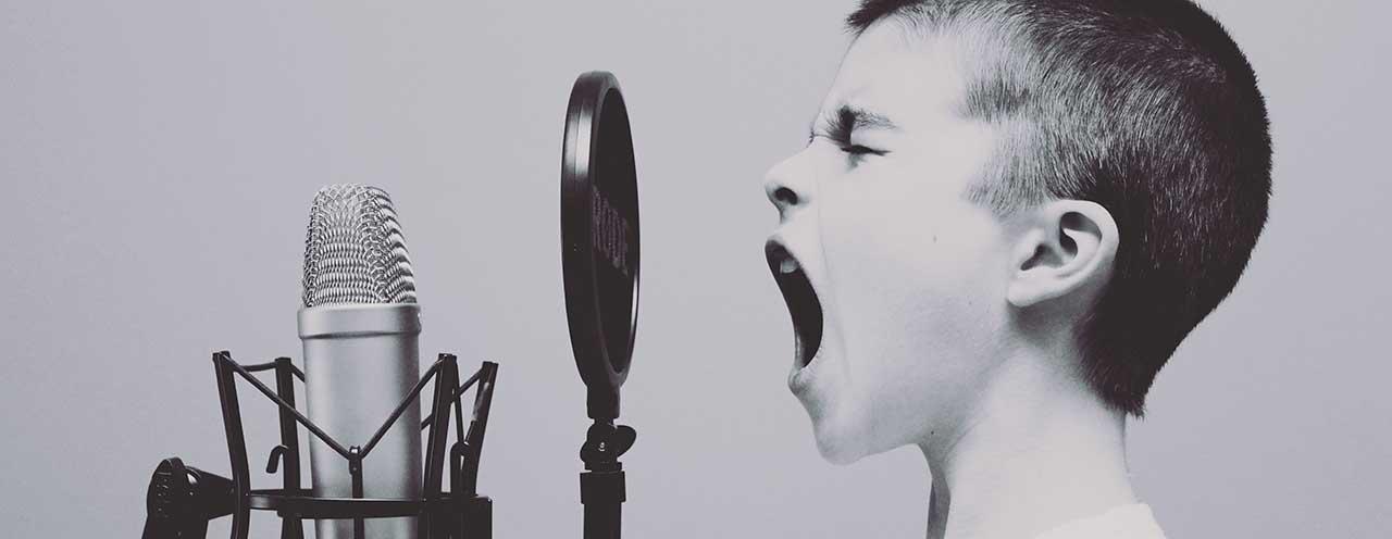 human vocal chords fc 496