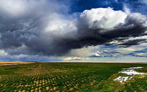 seeding the skies fc