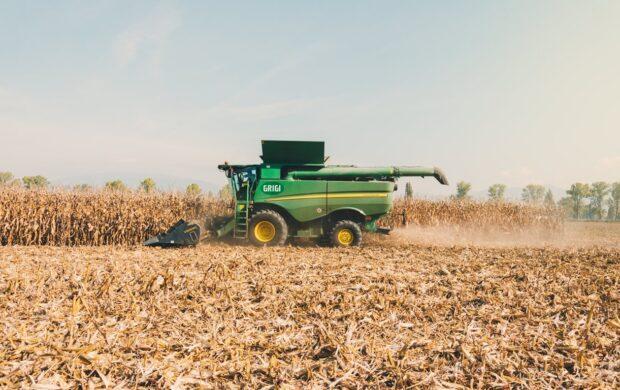 Agriculture by Edoardo Busti