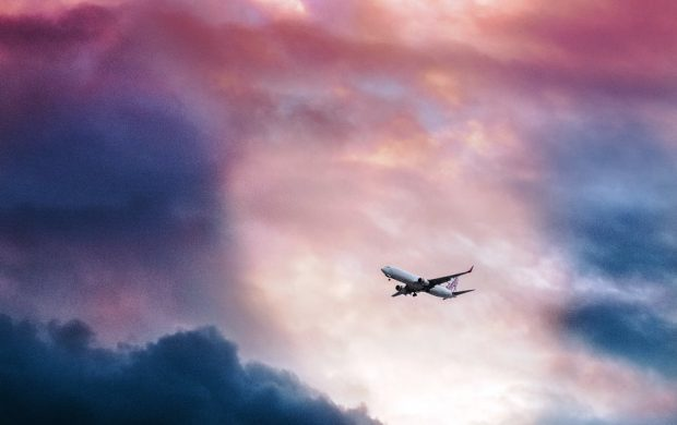 Flight by Leio Mclaren
