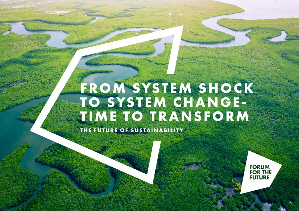 Future of Sustainability report - click to view the report