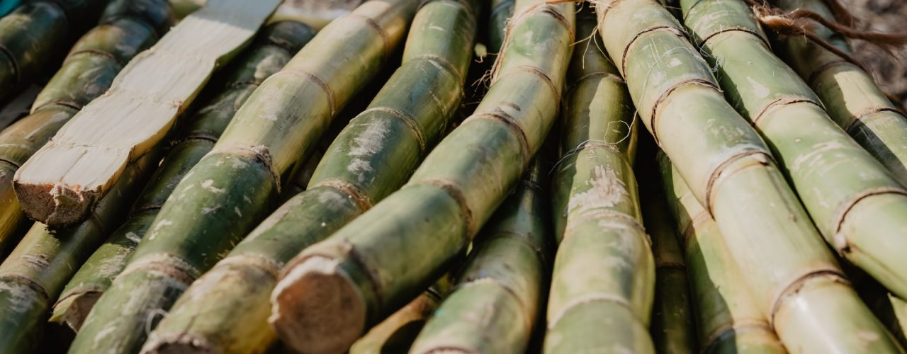 sugar cane sticks on brown wooden table